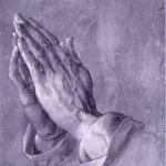 كريم الأيدي الجديد من فريدريك ماليه